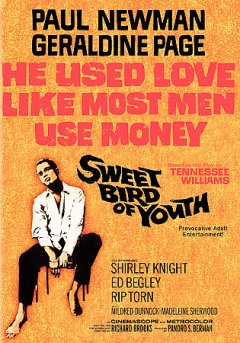 Sweet bird of youth /  Metro-Goldwyn-Mayer ; a Roxbury production ; produced by Pandro S. Berman ; written for the screen and directed by Richard Brooks.
