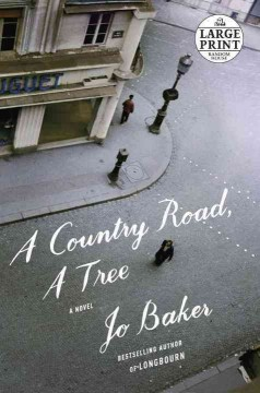 A country road, a tree : a novel / Jo Baker. - Jo Baker.