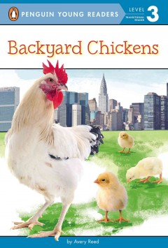 Backyard chickens /  by Avery Reed. - by Avery Reed.