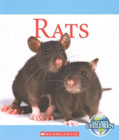 Rats /  by Josh Gregory. - by Josh Gregory.