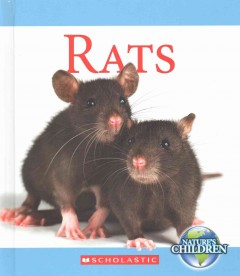 Rats /  by Josh Gregory.