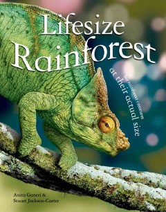 Lifesize rainforest - written by Anita Ganeri ; illustrated by Stuart Jackson-Carter.