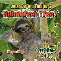 What do you find in a rainforest tree? /  Megan Kopp. - Megan Kopp.