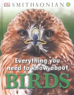 Everything you need to know about birds.