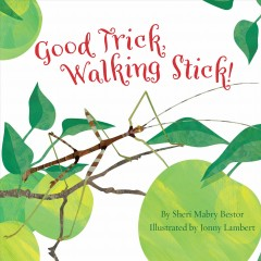 Good trick, walking stick! /  written by Sheri Mabry Bestor ; illustrated by Jonny Lambert. - written by Sheri Mabry Bestor ; illustrated by Jonny Lambert.