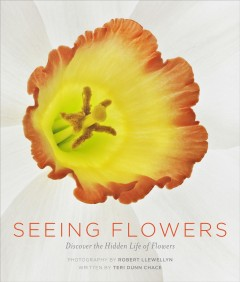 Seeing flowers /  Teri Dunn Chace ; photographs by Robert Llewellyn.