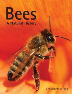 Bees : a natural history / Christopher O'Toole ; featuring photographs by Edward Ross. - Christopher O'Toole ; featuring photographs by Edward Ross.