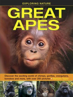 Great apes : discover the exciting world of chimps, gorillas, orangutans, bonobos and more, with over 200 pictures / Barbara Taylor. - Barbara Taylor.