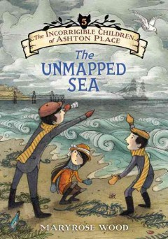 The unmapped sea /  by Maryrose Wood ; illustrated by Eliza Wheeler. - by Maryrose Wood ; illustrated by Eliza Wheeler.