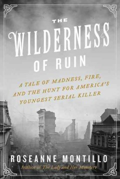Wilderness of Ruin : A Tale of Madness, Boston's Great Fire, and the Hunt for America's Youngest Serial Killer