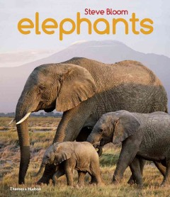 Elephants : a book for children with 80 color photographs / Steve Bloom ; text by David Henry Wilson. - Steve Bloom ; text by David Henry Wilson.