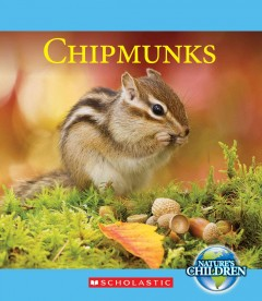 Chipmunks - by Josh Gregory.