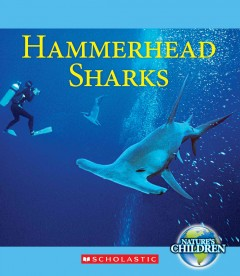 Hammerhead sharks - by Vicky Franchino.
