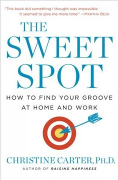 Sweet Spot : How to Find Your Groove at Home and Work