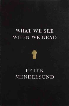 What we see when we read : a phenomenology ; with illustrations - Peter Mendelsund.