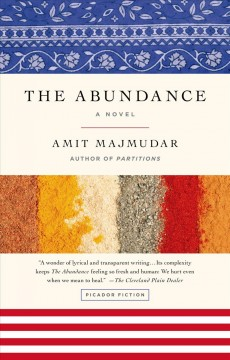 The abundance : A Novel. Amit Majmudar.