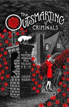 The outsmarting of criminals - Steven Rigolosi.