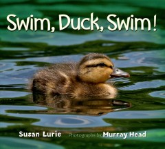 Swim, duck, swim! /  Susan Lurie ; photographs by Murray Head. - Susan Lurie ; photographs by Murray Head.
