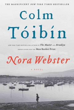 Nora Webster : a novel - Colm Toibin.