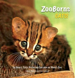 ZooBorns cats! : the newest, cutest kittens and cubs from the world's zoos - Andrew Bleiman and Chris Eastland.