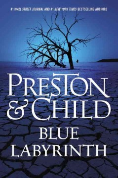 Blue labyrinth - Douglas Preston & Lincoln Child.