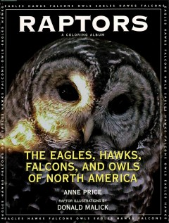 Raptors : The Eagles, Hawks, Falcons, and Owls of North America. Anne Price.