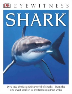Shark - written by Miranda Macquitty.