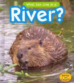 What can live in a river? - John-Paul Wilkins.