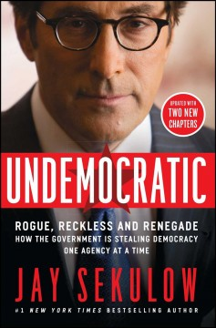 Undemocratic : Rogue, Reckless and Renegade: How the Government Is Stealing Democracy One Agency at a Time