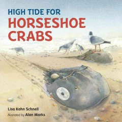 High tide for horseshoe crabs /  Lisa Kahn Schnell ; illustrated by Alan Marks. - Lisa Kahn Schnell ; illustrated by Alan Marks.