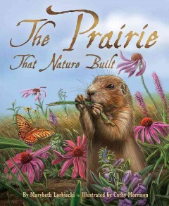 The prairie that nature built - by Marybeth Lorbiecki ; illustrated by Cathy Morrison.