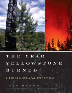 Year Yellowstone Burned : A Twenty-Five Year Perspective