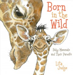 Born in the wild : baby mammals and their parents - Lita Judge.