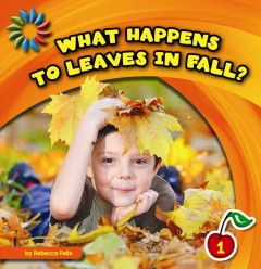 What happens to leaves in fall? - by Rebecca Felix.