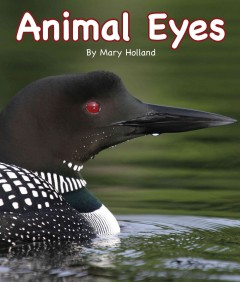 Animal eyes /  by Mary Holland. - by Mary Holland.