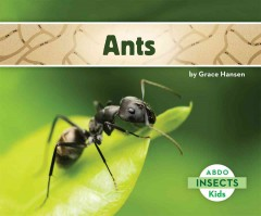 Ants /  by Grace Hansen. - by Grace Hansen.