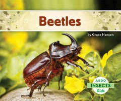 Beetles /  by Grace Hansen. - by Grace Hansen.
