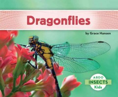 Dragonflies /  by Grace Hansen. - by Grace Hansen.