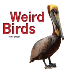 Weird birds - Chris Earley.