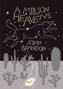 A million heavens / John Brandon.