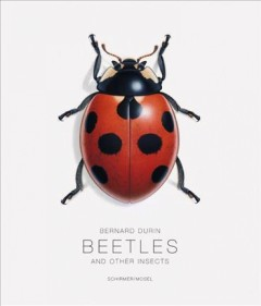 Beetles and other insects - Bernard Durin ; introduction by Gerhard Scherer ; entomological texts by Gerhard Scherer, Michael Balke and others ; [translated by Michael Ashdown, Martin Spies].
