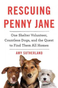 Rescuing Penny Jane : one shelter volunteer, countless dogs, and the quest to find them all homes / Amy Sutherland. - Amy Sutherland.