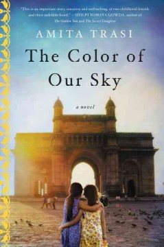 The color of our sky : a novel / Amita Trasi.