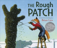 The rough patch /  written and illustrated by Brian Lies. - written and illustrated by Brian Lies.