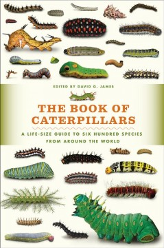 The book of caterpillars : a life-size guide to six hundred species from around the world / edited by David G. James ; contributors, David Albaugh [and 11 others]. - edited by David G. James ; contributors, David Albaugh [and 11 others].