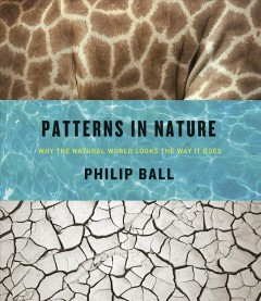 Patterns in nature : why the natural world looks the way it does / Philip Ball.