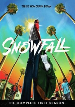 Snowfall : complete first season [3-disc set].