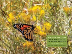 Wings in the light : wild butterflies in North America / David Lee Myers ; foreword by Robert Michael Pyle. - David Lee Myers ; foreword by Robert Michael Pyle.