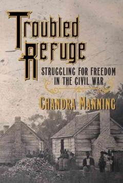 Troubled refuge : struggling for freedom in the Civil War / Chandra Manning.