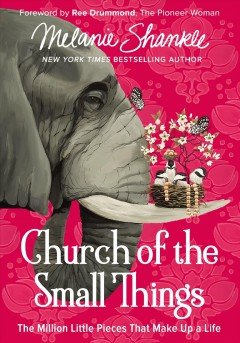 Church of the small things : the million little pieces that make up a life / Melanie Shankle.